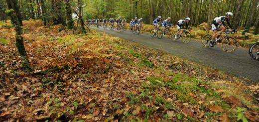 Paris-Tours 2014 - 12/10/2014 - un passage dans les feuilles mortes