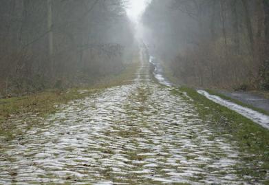 Paris-Roubaix Arenberg joanSeguidor