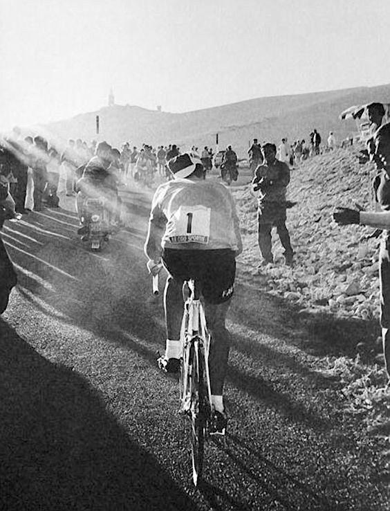 Eddy Merckx JoanSeguidor