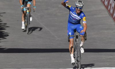 Julian Alaphilippe Flandes JoanSeguidor