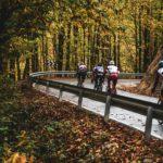 Vuelta otoño joanSeguidor